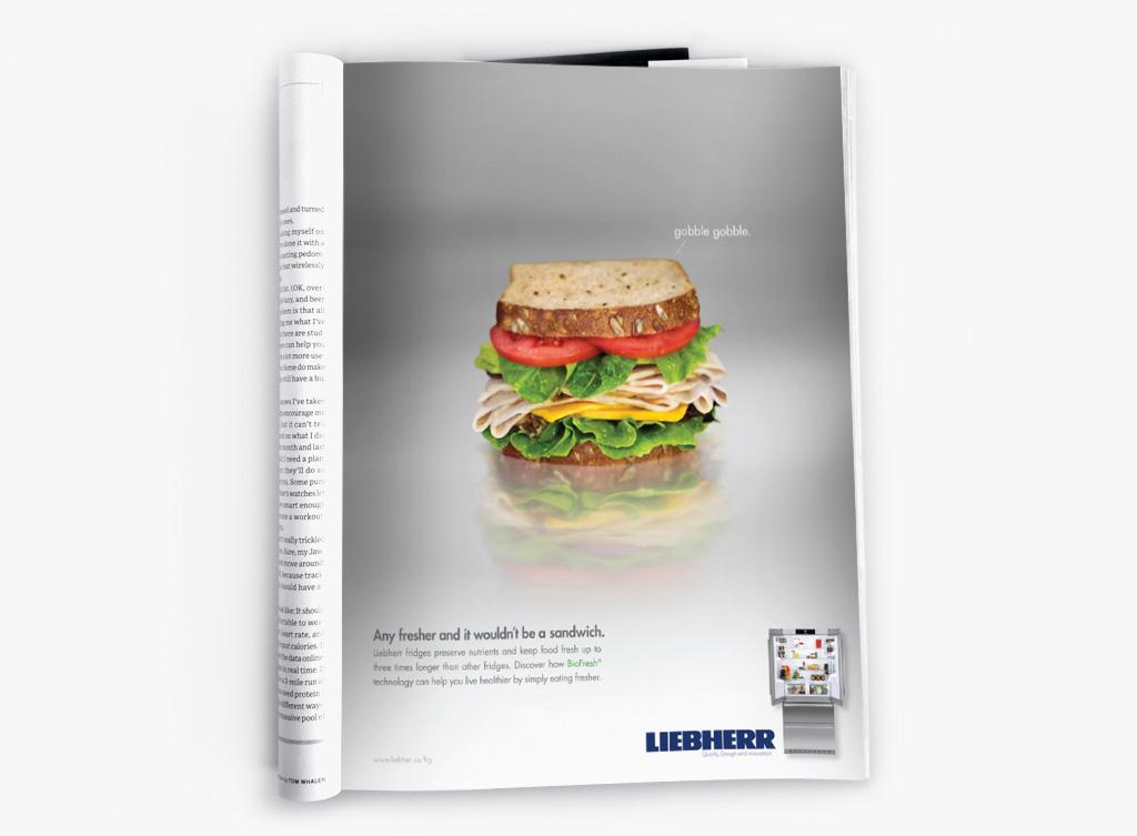 lieb_sandwich_GREY_bkg